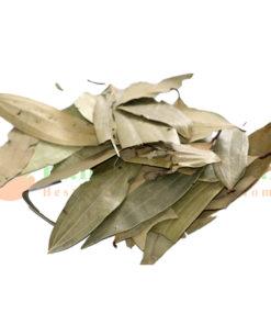 Cinnamon Tamaia & Taiz Paat